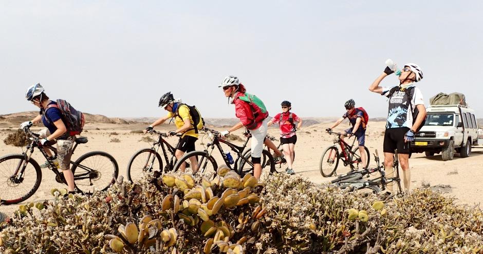 Bike-Gruppe macht Pause in der Wüste, Namibia