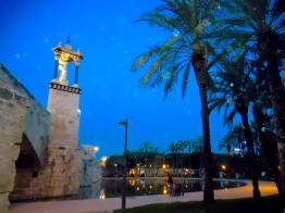 Jardín Túria bei Nacht