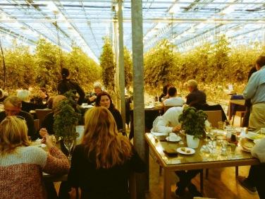 Restaurant-Betrieb inmitten des Gewächshauses. Auf jedem Tisch steht frischer Basilikum - hier wurde einfach an alles gedacht