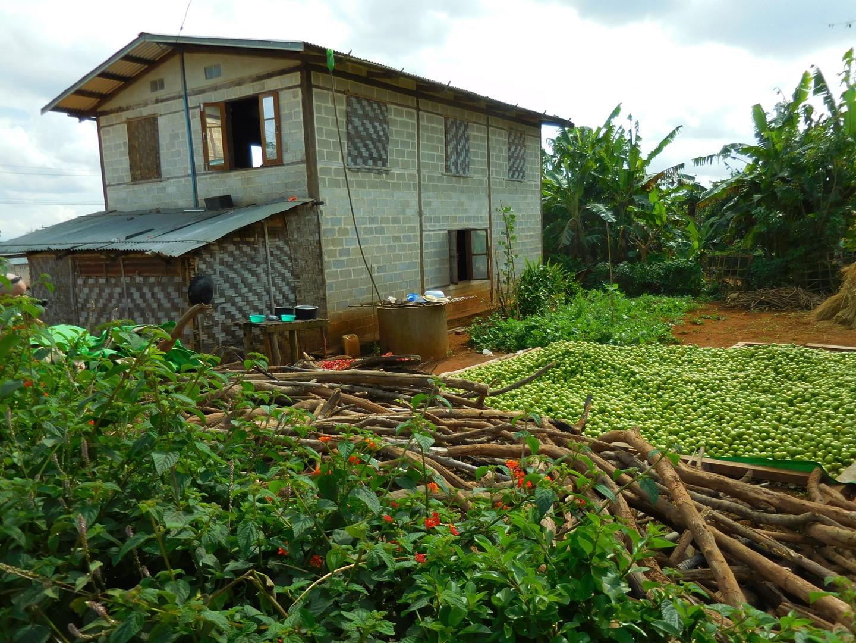 Bauernhof mit Tomatenlager in Myanmar/Burma