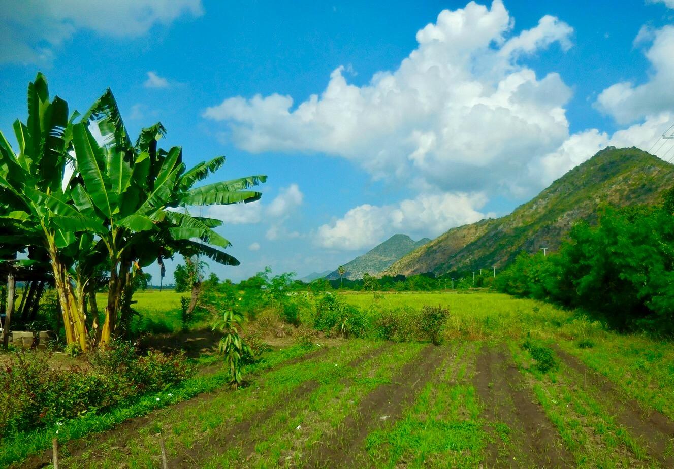 Üppige Landschaft in Myanmar/Burma