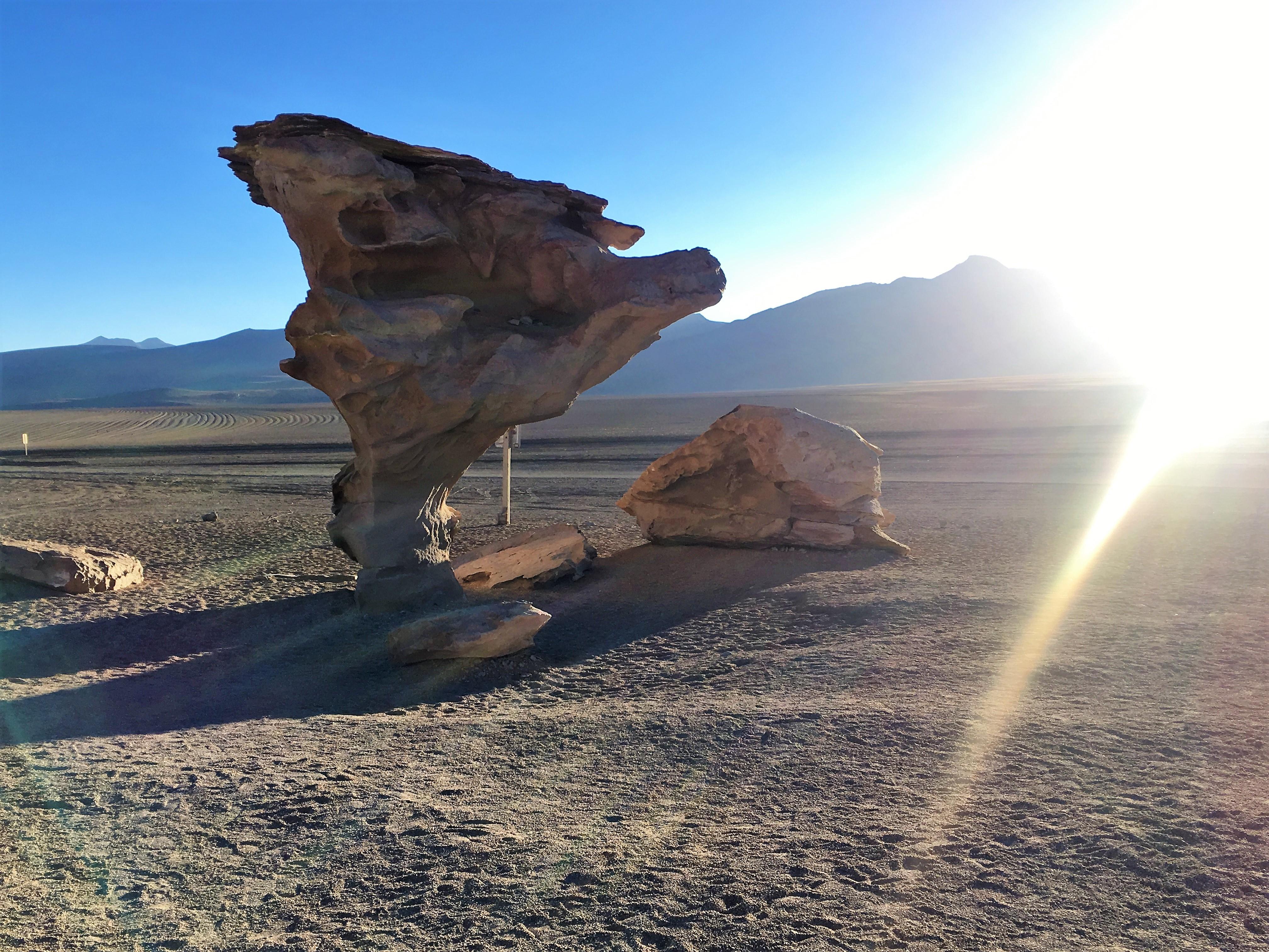 Arbol de Piedra (Baum aus Stein)