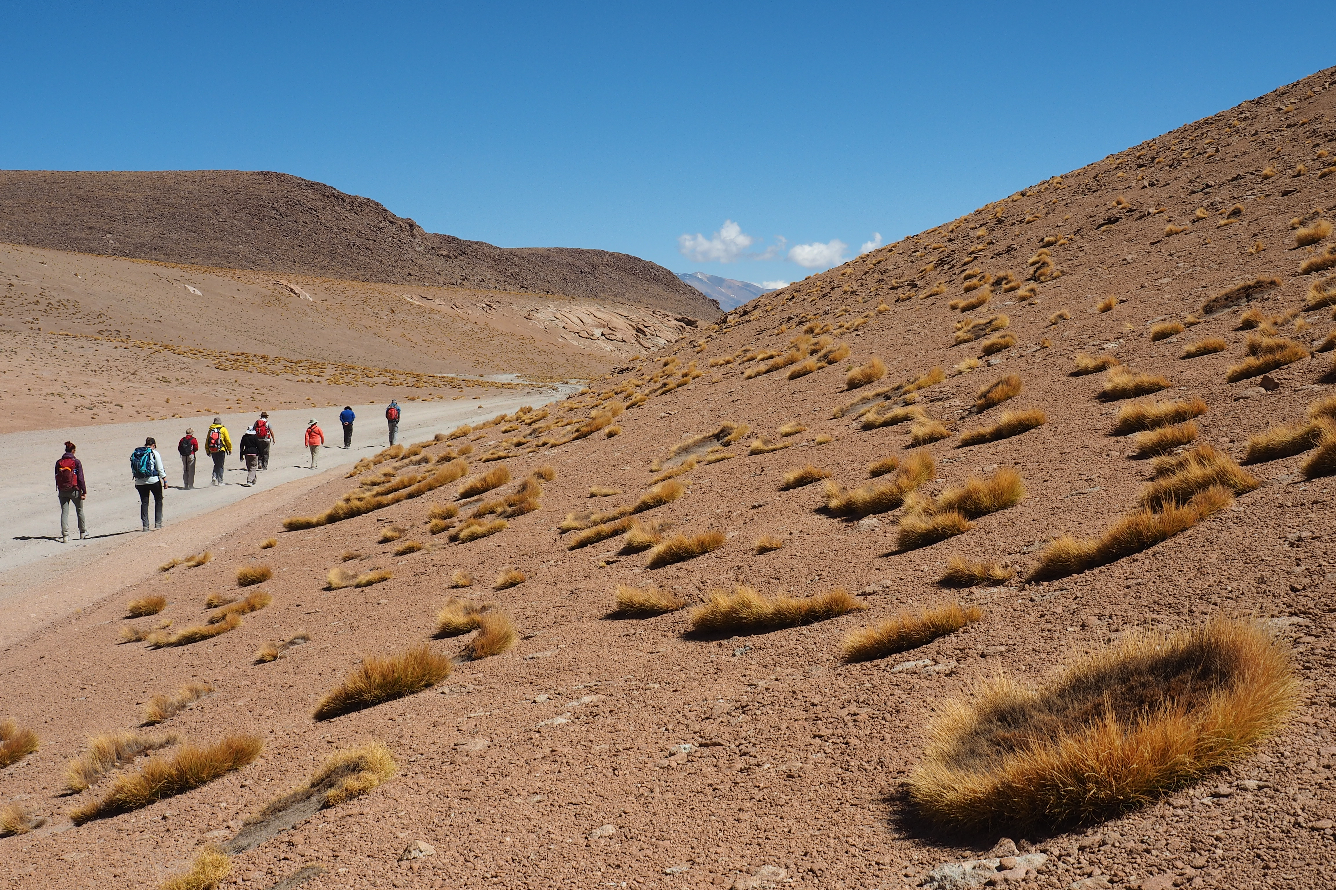 Wanderung Altiplano